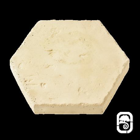 Tomette Hexagonale Ton pierre ciré