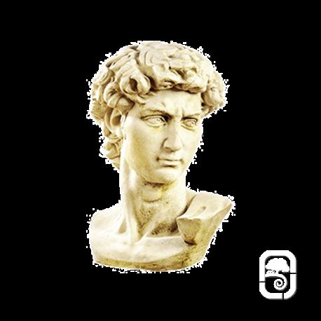 Buste de David - H 58cm
