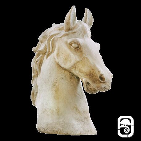 Buste de cheval - H 49cm